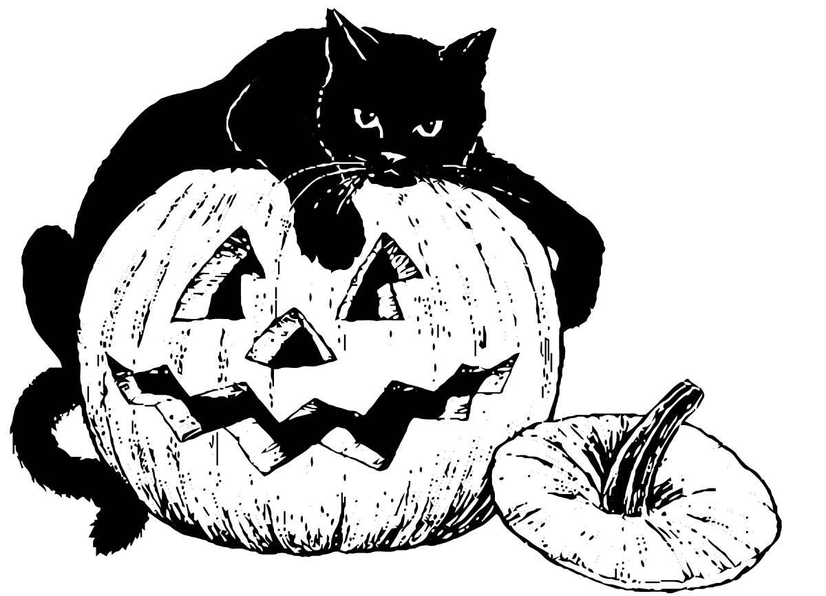1200x865 Coloring Page Black Cat On Pumpkin