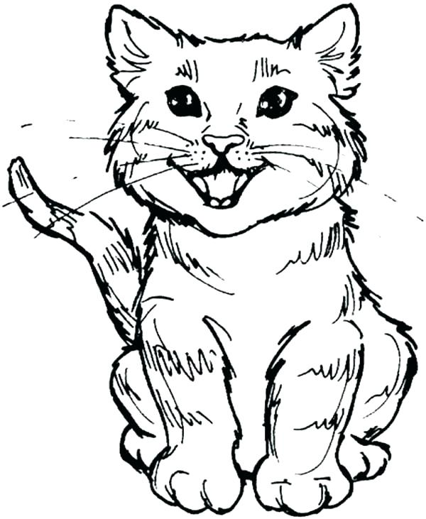 600x731 Halloween Cats Coloring Pages Cat Coloring Pages Cute Kitty Cat