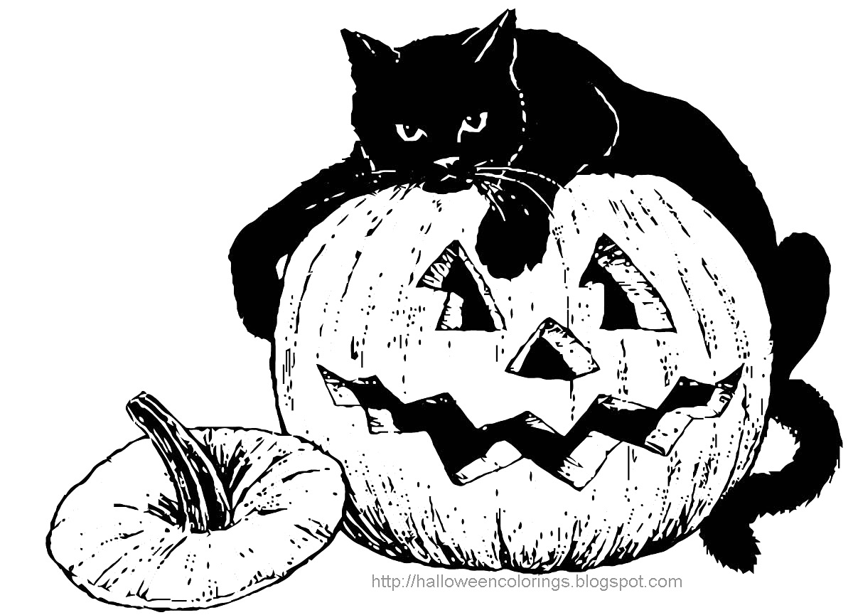 1200x865 Pluto Pumpkin Black Cat Disney Halloween Coloring Pages Printable