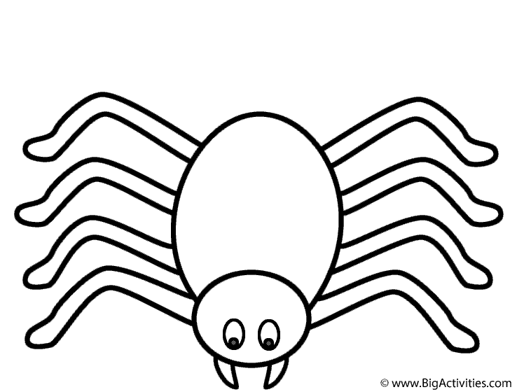 738x560 Halloween Spider Coloring Pages