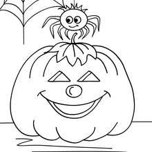 220x220 Humoristic Spiderweb Coloring Pages