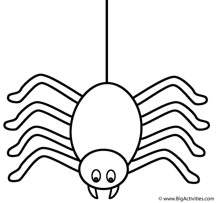 730x687 Spider On Thread