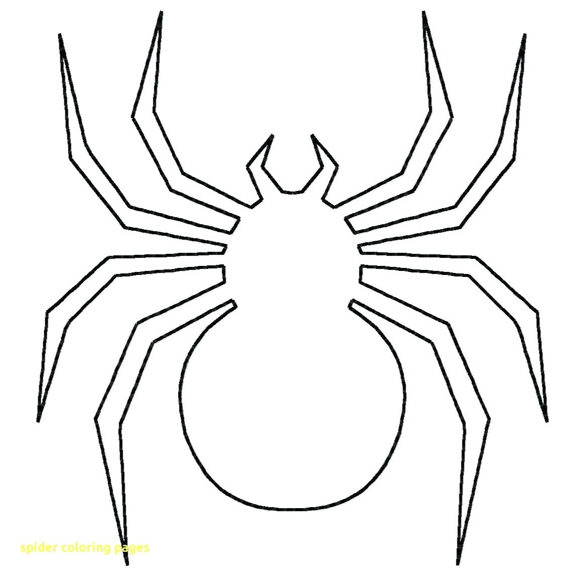 1146x1146 Coloring Halloween Spider Coloring Pages