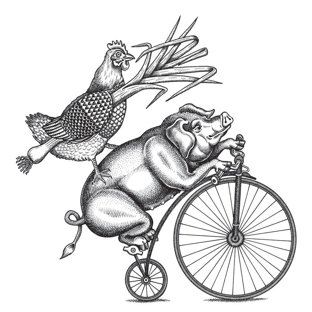 1000x1000 Chris Burge Illustration
