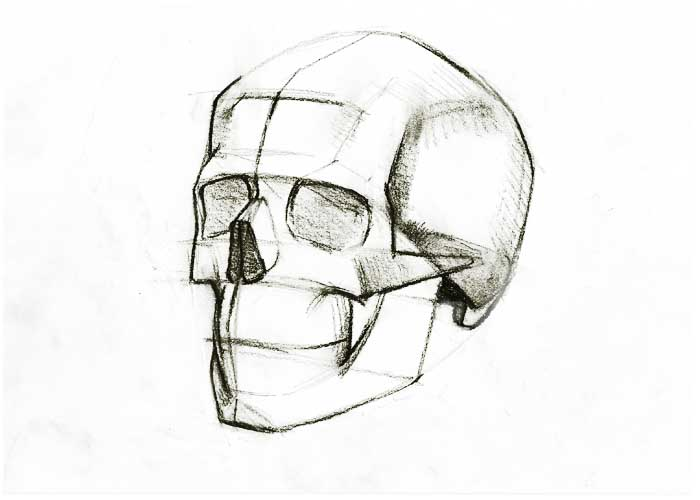 700x500 How To Draw A Skull Online Drawing Lessons