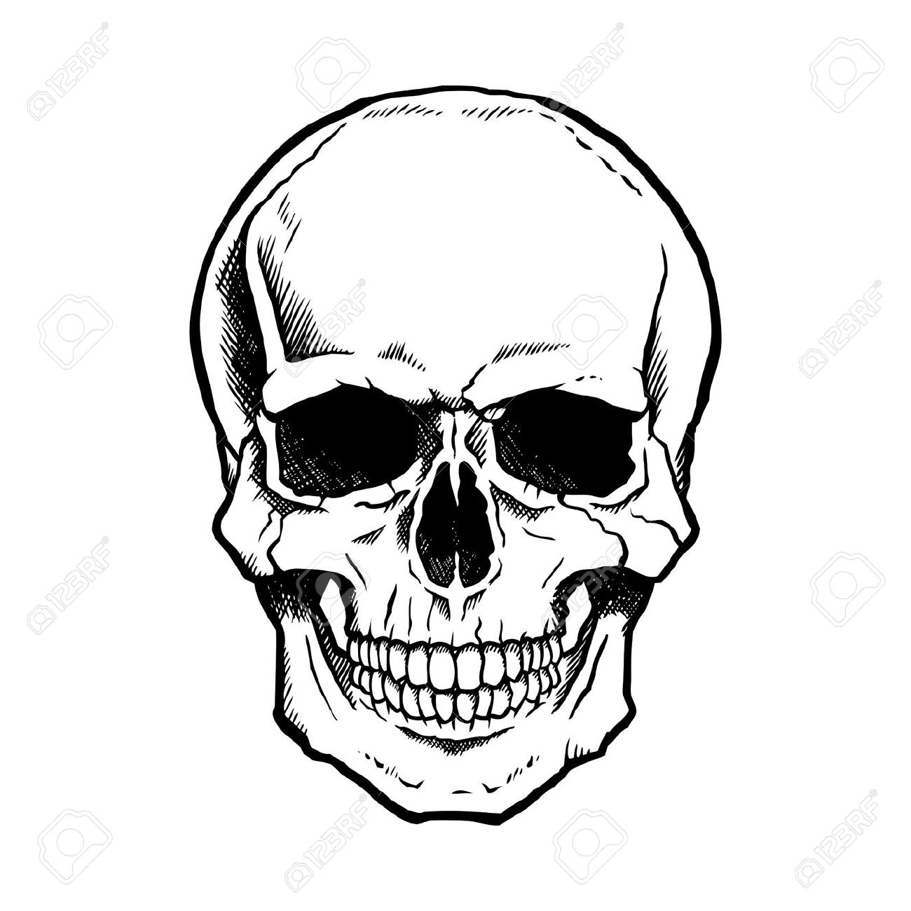 1300x1300 Vector Black And White Illustration Of Human Skull With A Lower