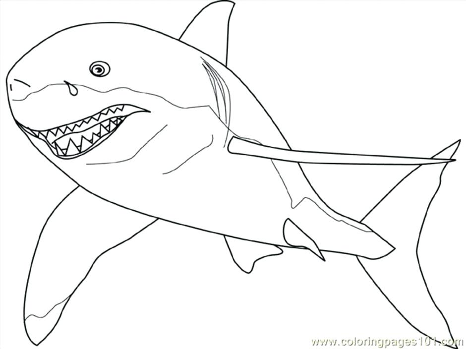 940x704 Hammerhead Shark Coloring Pages Shark Coloring Pages To Print