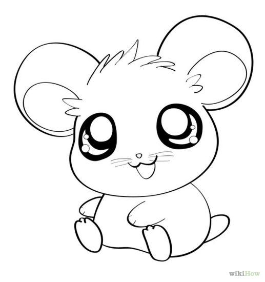 517x550 Draw An Anime Hamster Anime