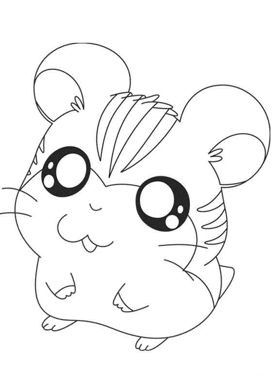 567x794 Drawn Hamster Coloring Page