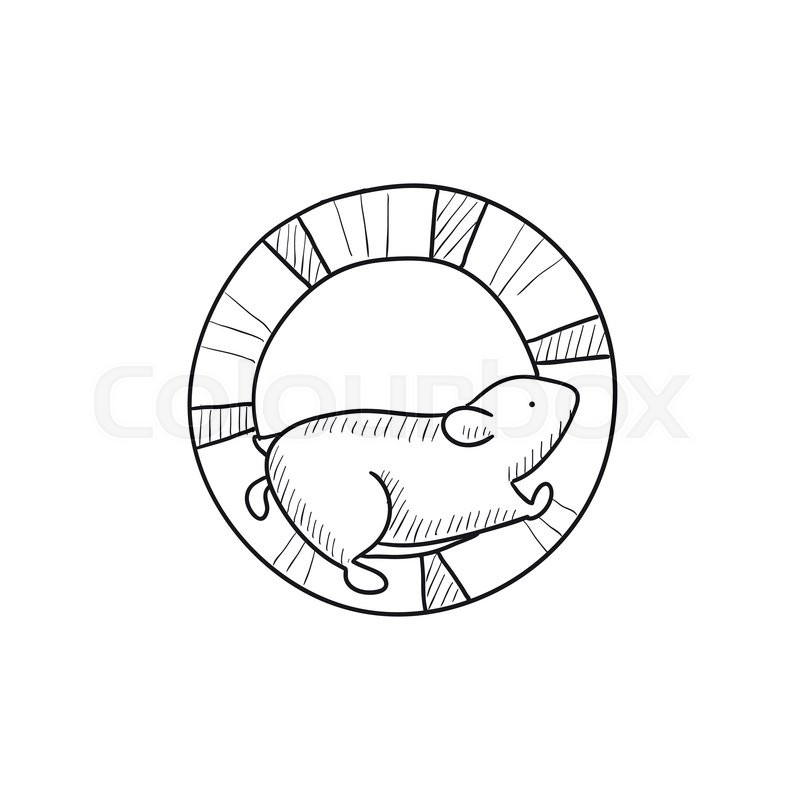 800x800 Hamster Running In The Wheel Vector Sketch Icon Isolated