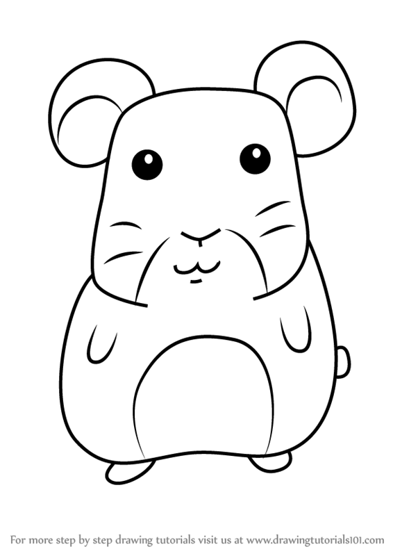566x800 Learn How To Draw A Hamster For Kids (Animals For Kids) Step By