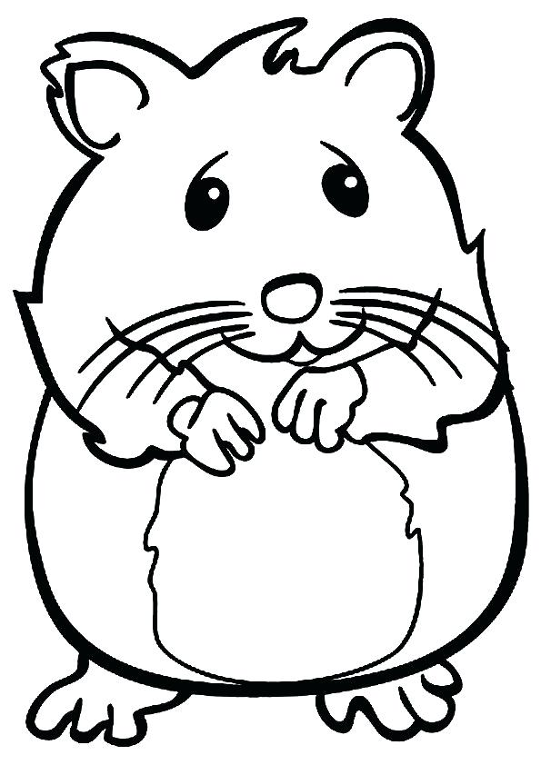 595x842 Stunning Hamster Coloring Pages Best Of Print Image Pet Theme