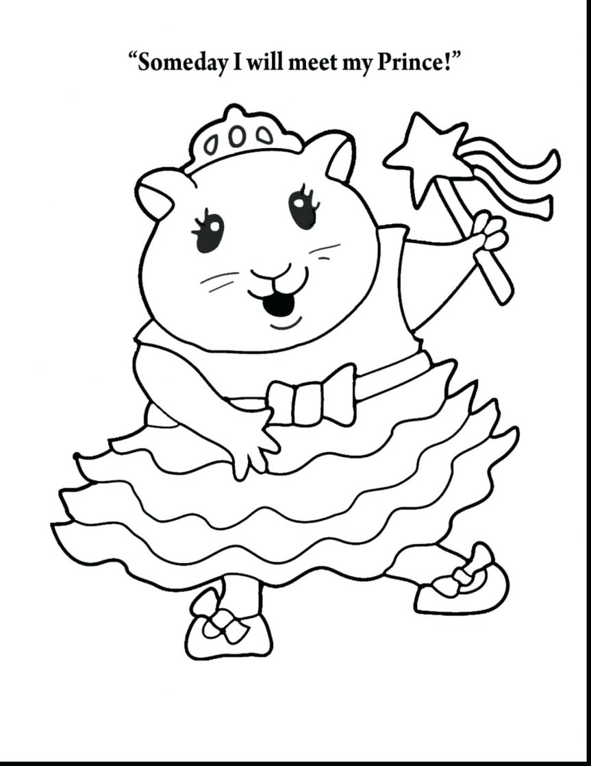 Hamster Cartoon Drawing at GetDrawings.com | Free for personal use ...