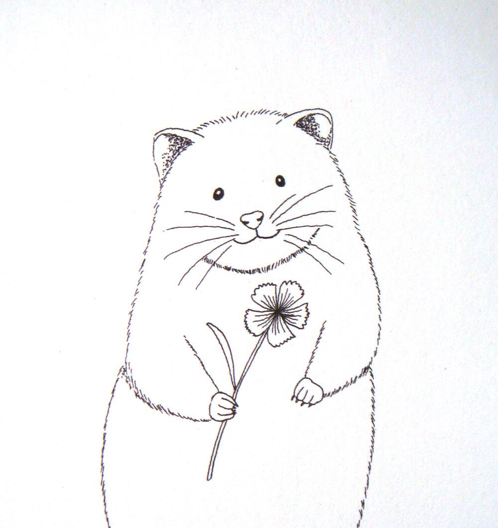1000x1060 Hamster Ink Drawing Print Hamster Illustration Love Black