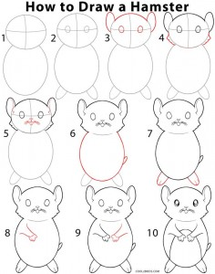 236x300 How To Draw A Hamster Step By Step Instructions For Drawing