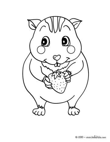 363x470 Kawaii Hamster Coloring Pages