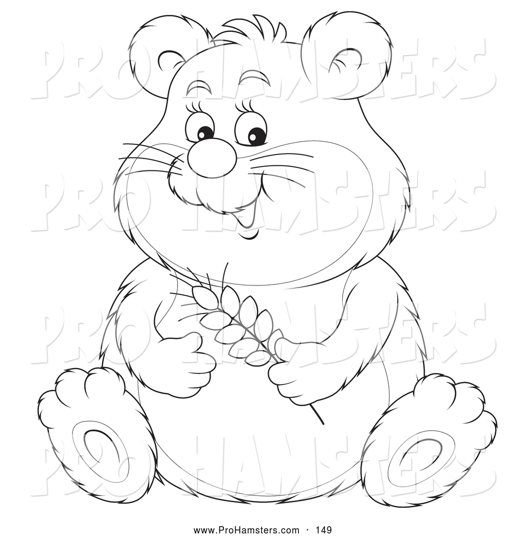 Hamster Drawing at GetDrawings.com | Free for personal use Hamster ...