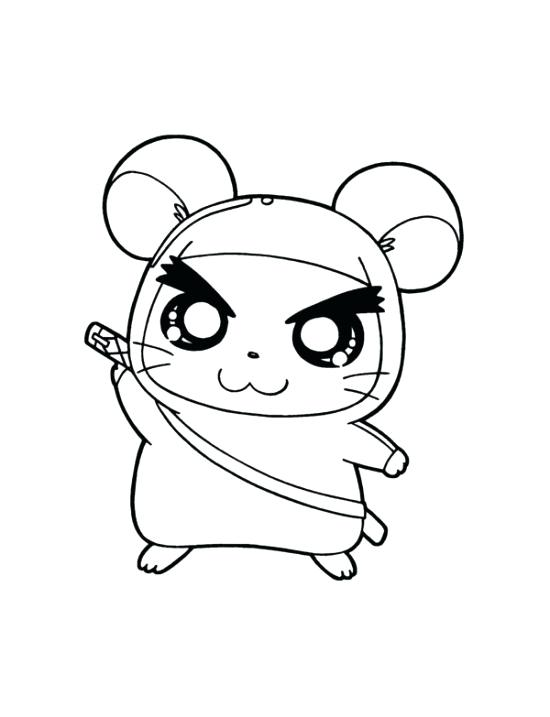 550x717 Cute Hamster Coloring Pictures Pages Printable Drawn Page Best