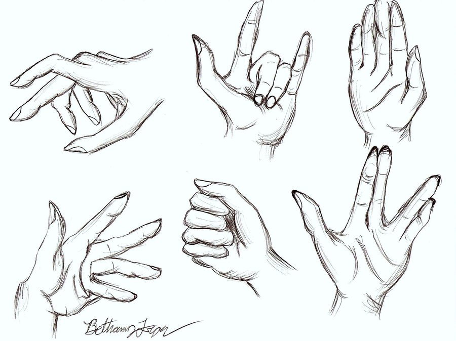 Hand Anatomy Drawing at GetDrawings.com | Free for personal use Hand ...