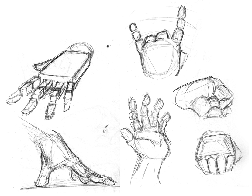 829x646 Hand Study By