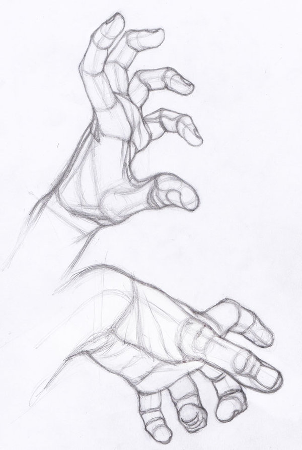 600x893 Drawing Illustration Hands Art Reference How To Draw Hand Studies