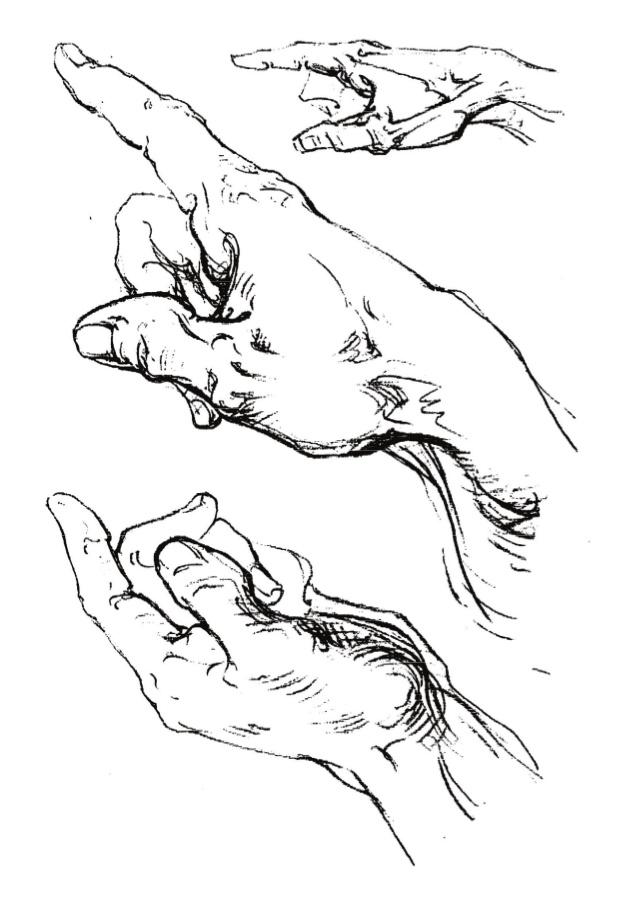 Hand Bones Drawing
