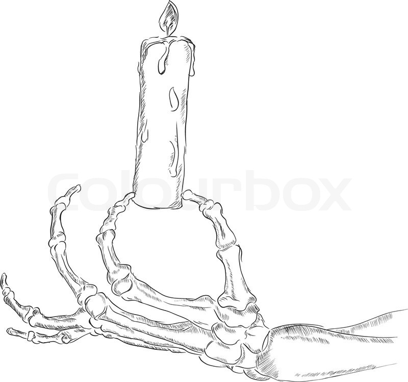 800x748 The Hand Skeleton Stock Vector Colourbox