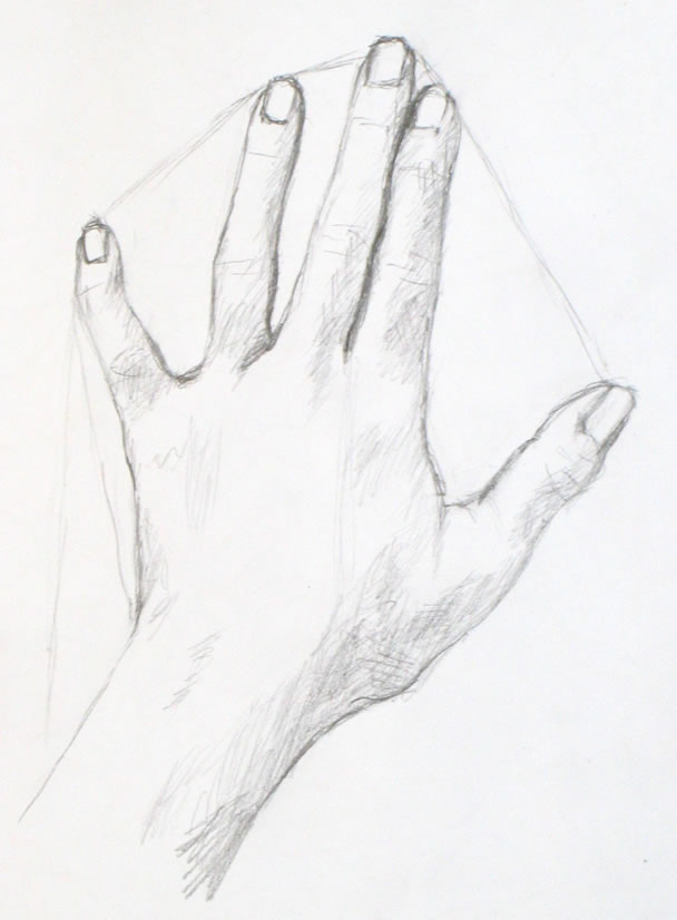 608x826 Drawing Tutorial A Simple Drawing Of Your Hand Portrait Artist