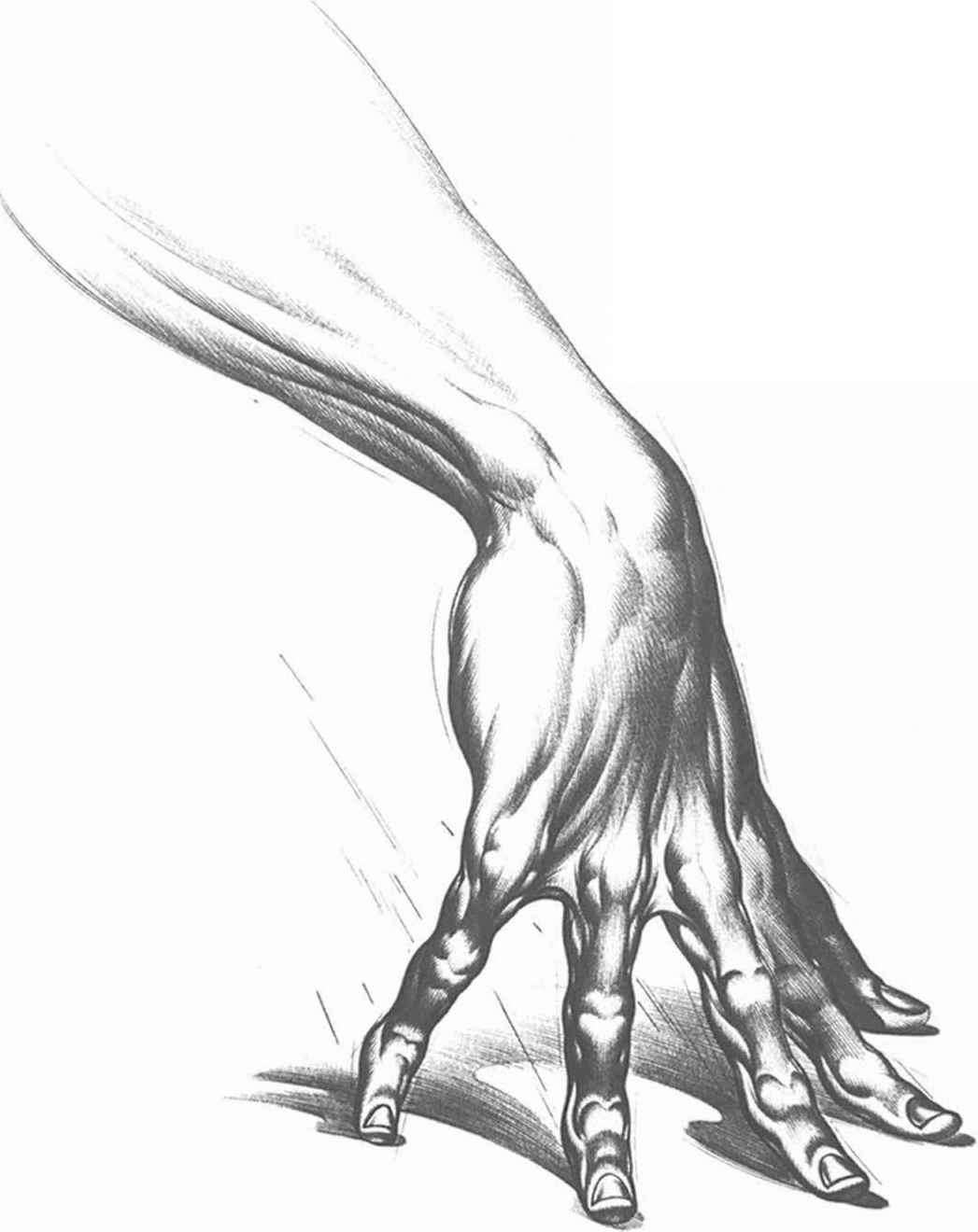1047x1320 How To Draw A Claw Hand