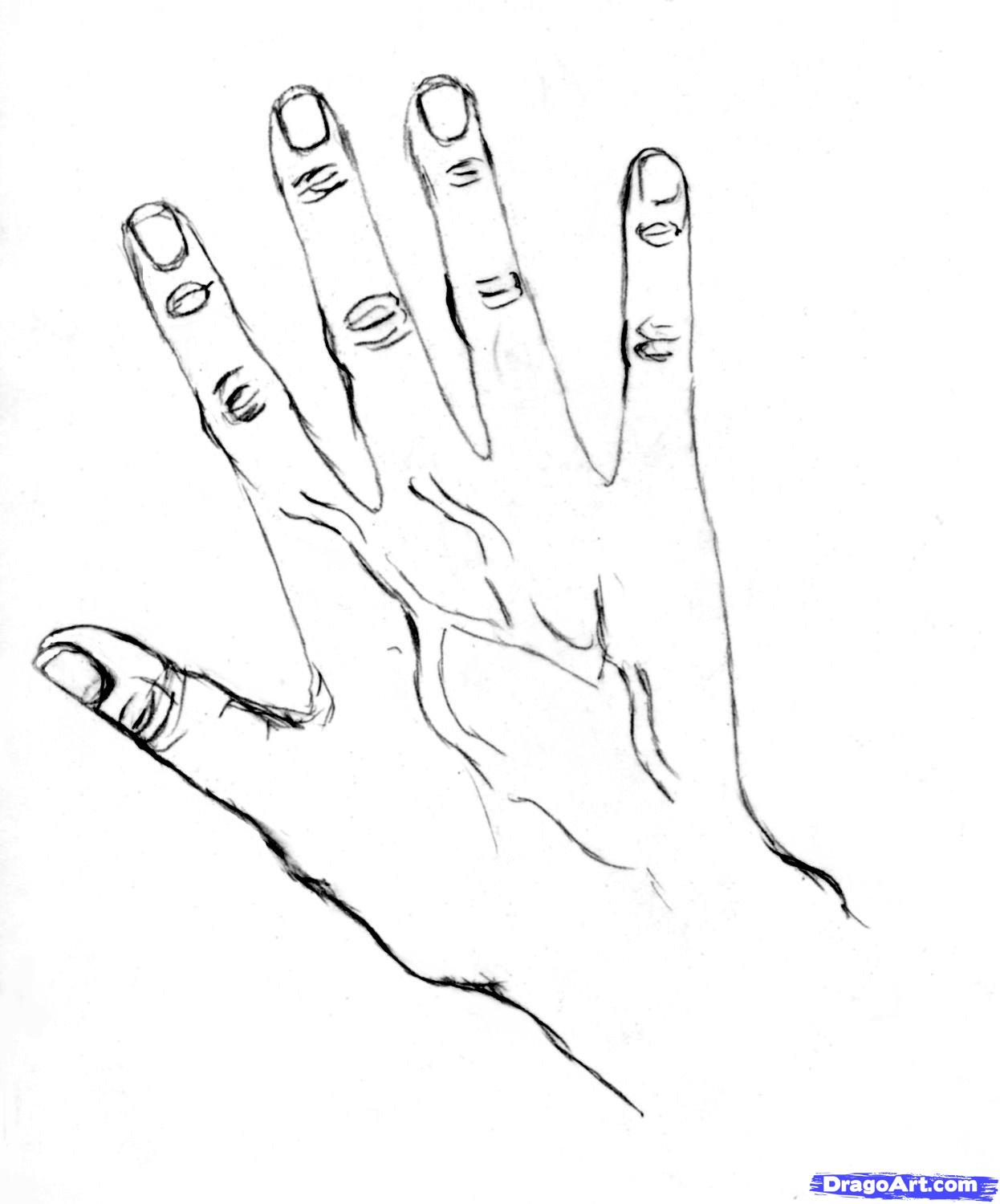 1246x1500 How To Sketchd Draw Hands A Badly Drawn Hand Can Spoil