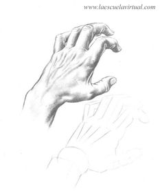 236x277 Como Dibujar Las Manos Pasrte 2 Tutorial Gratis Curso Online How