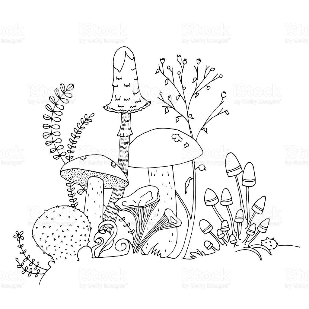 1024x1024 Drawn Mushroom Outline