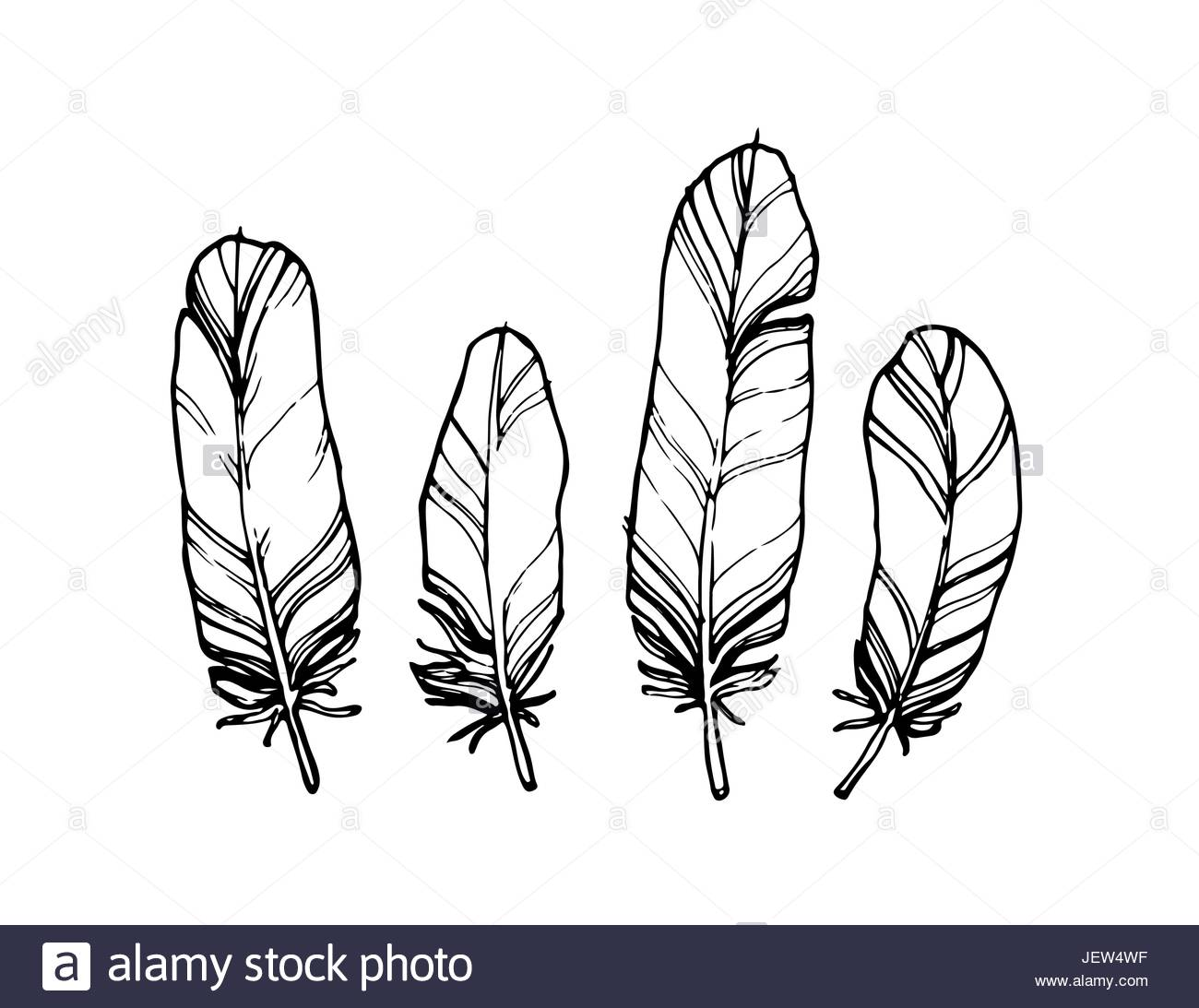 1300x1093 Hand Drawn Outline Feathers Set. Vector Design Elements On A White