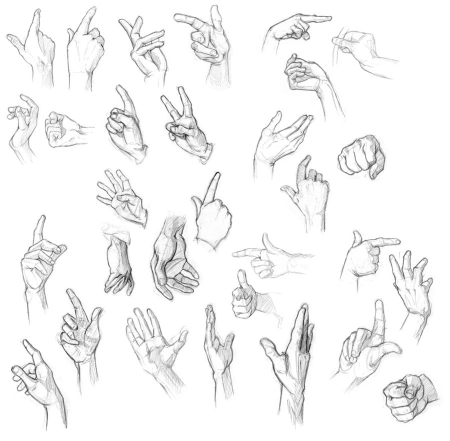 900x882 Hand Practice By Common Calluna