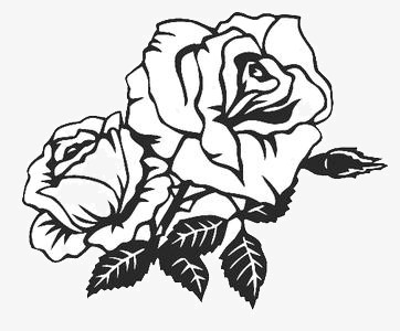 362x300 Hand Drawn Rose Tattoo, Hand Painted, Tattoo, Rose Png Image