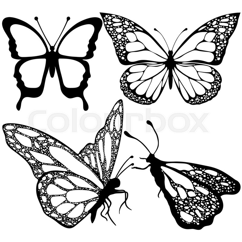 800x800 Butterflies Set, Monochrome, Coloring Book, Black And White