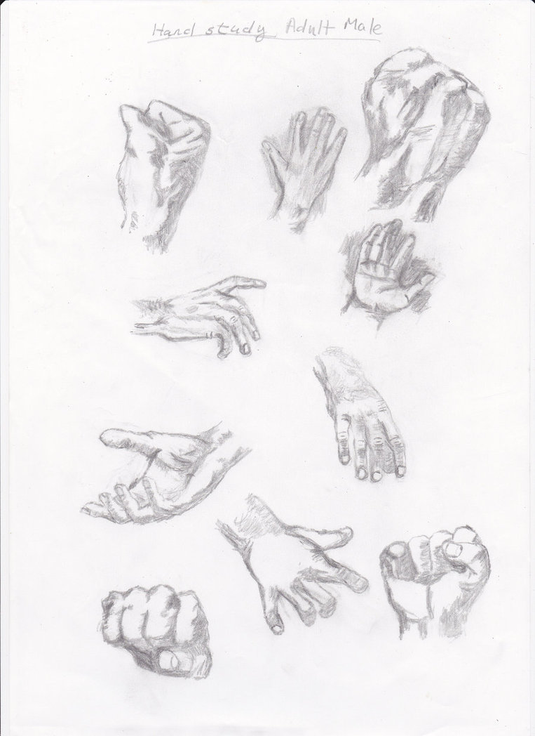 763x1048 Adult Male Hand Study By Pixiedust1317