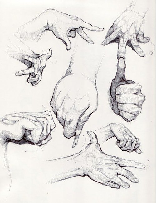 500x652 Drawing Hand Black And White Sketch Artistic Fingers
