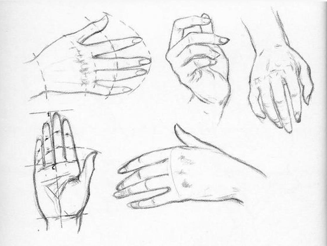 1115x837 Praxis Part Five Handspart Five Hands