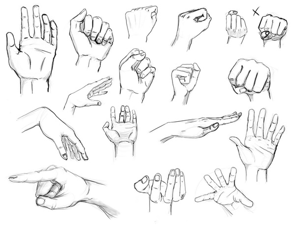 600x458 Hand Sketches 1 Hands And Feet Hand Sketch