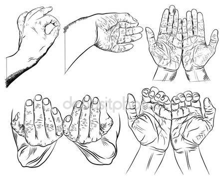 449x359 Female Hand Gestures Stock Vectors, Royalty Free Female Hand