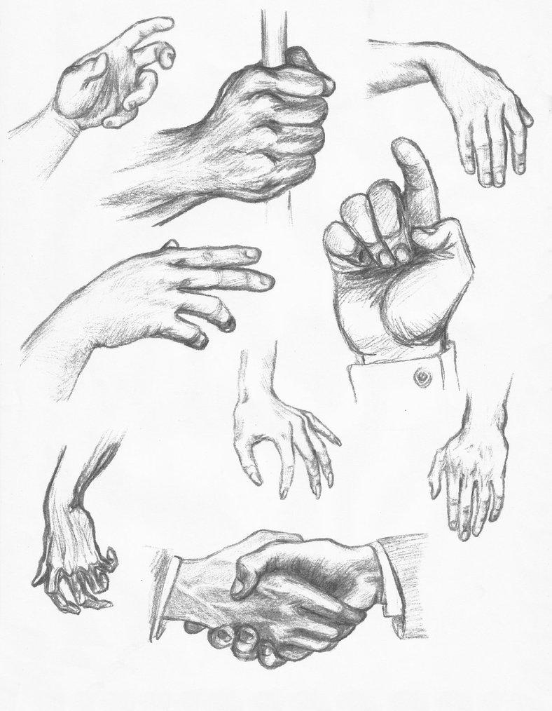788x1014 Daily Sketch