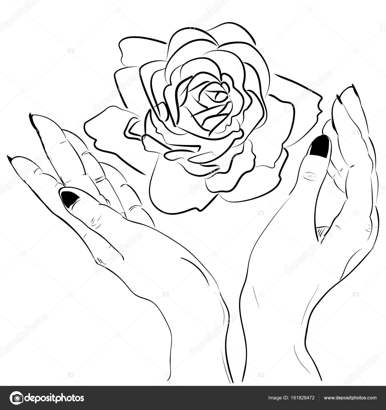 1600x1700 Hands Holding A Rose Flower Isolated Outline Stock Vector