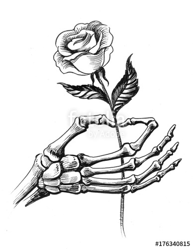 388x500 Skeleton Hand Holding A Rose Stock Photo And Royalty Free Images