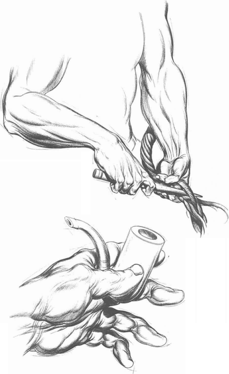 929x1520 Hand Actions With An Inflexible Object