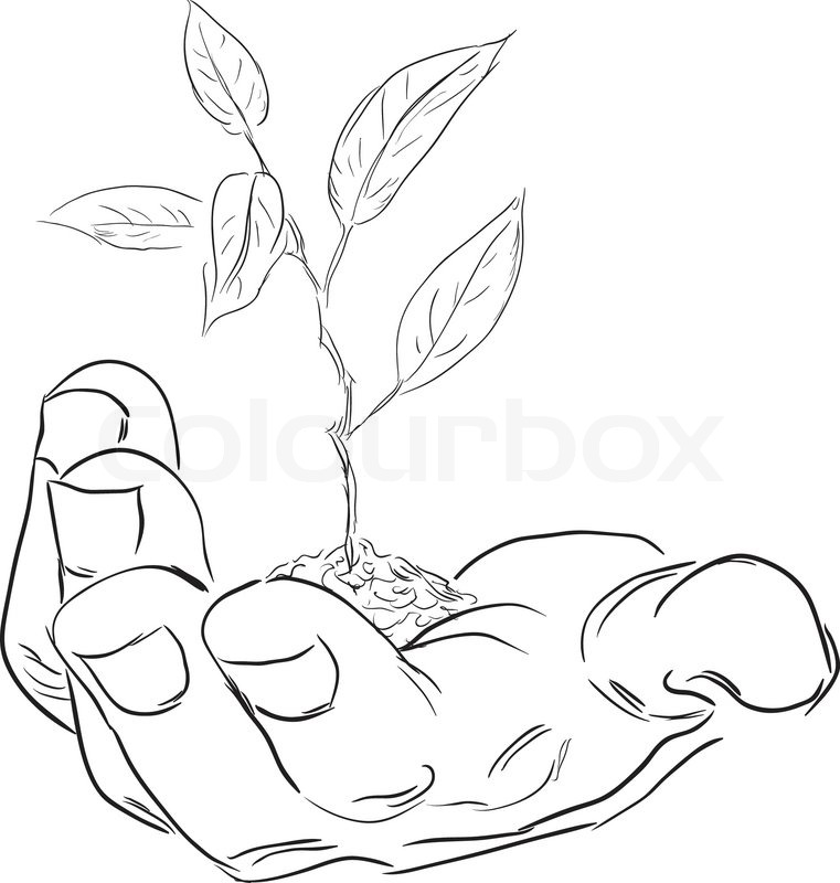 761x800 Man's Hand With A Branch. Vector Illustration. Stock Vector