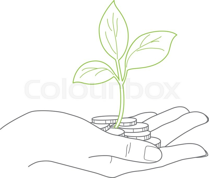 800x683 Investment Concept, Close Up Of Female Hand Holding Stack Of Coins