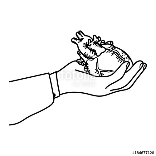 500x500 Hand Holding A Human Heart Vector Illustration Outline Sketch Hand