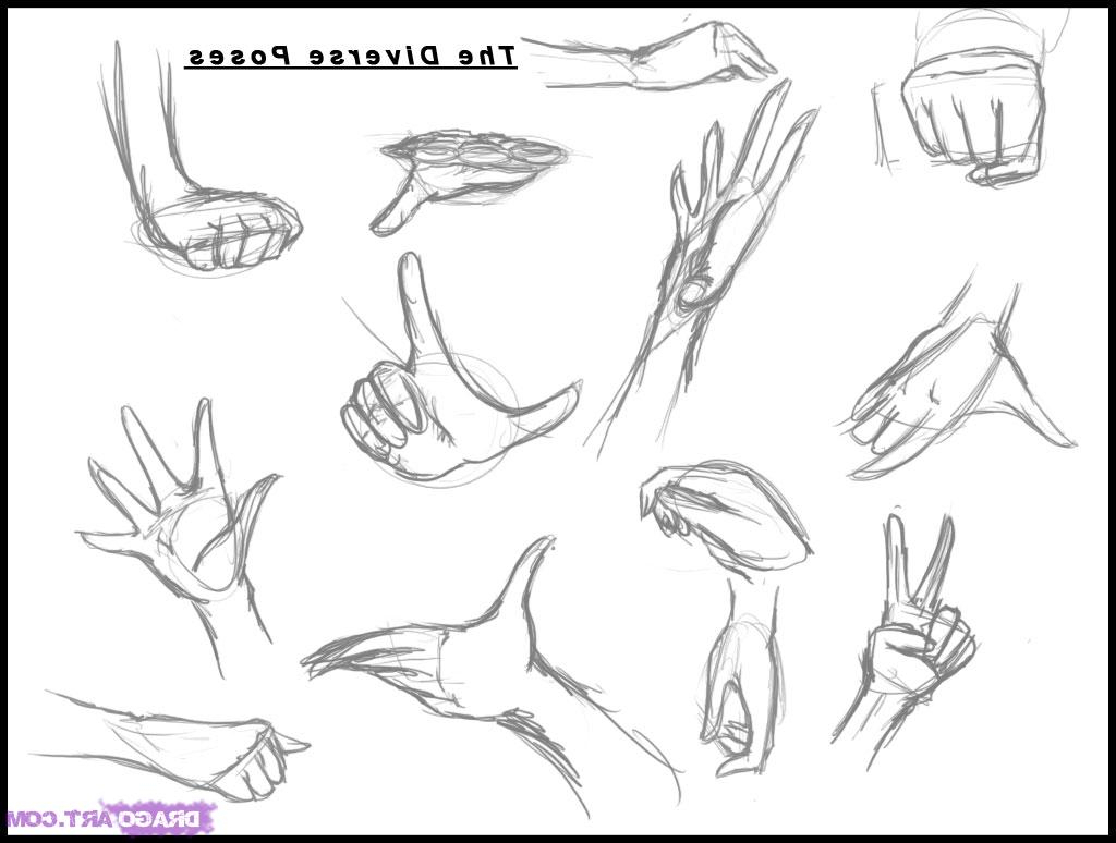 1024x774 Drawing Anime Hands Drawing Anime Hand How To Draw Anime Hands