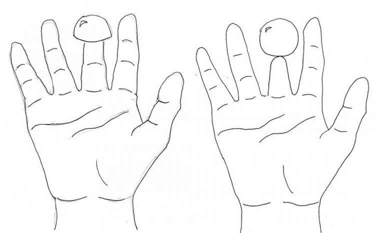 750x466 Sleight Of Hand Researchers Work Their Magic On Shrunken Finger